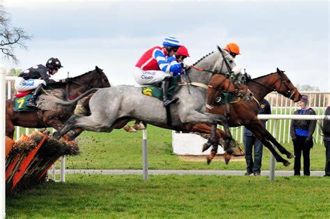 horse racing national race hd hunt betting jockey flickr tested bangor coverage garcia yanet strips downloads weather magazine panties itv