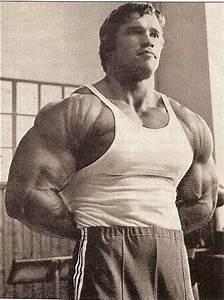 MUSCLE GALLERY 15 :: SCHWARZENEGGER.IT :: Arnold ...