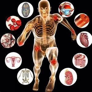 Unit 5  U2013 Human Physiology  U2013 Biology For Medical Entrance Exams