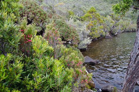 landscape gallery tasmania australian landscape images australian landscape images