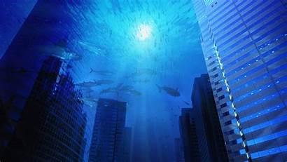 Underwater Wallpapers Desktop Pixelstalk