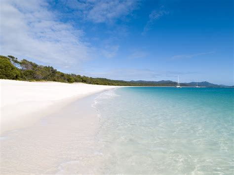 charter area  whitsunday islands sailing   coral