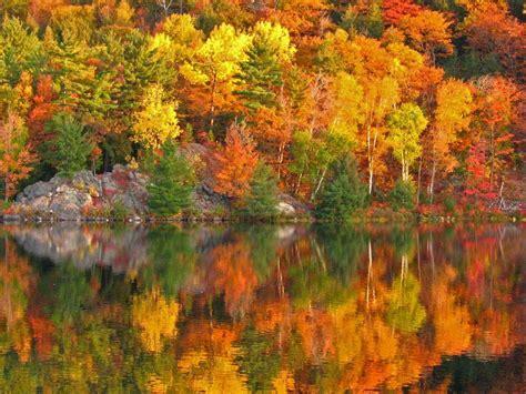 October Morning Bing Wallpaper Download