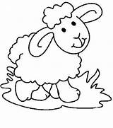 Sheep Coloring Pages Colouring Cartoon Dog Clipartmag Getdrawings Drawings sketch template