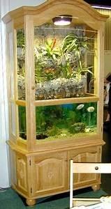 Pflanzen Terrarium Einrichten : click the image to open in full size aquarium riparium paludarium terrarium pflanzen plants ~ Orissabook.com Haus und Dekorationen