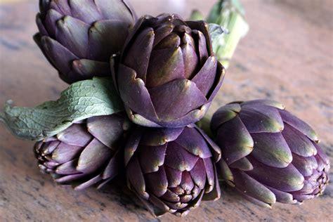 l 39 artichaut une plante potagère on consomme le