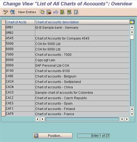 define chart of accounts fico stechies