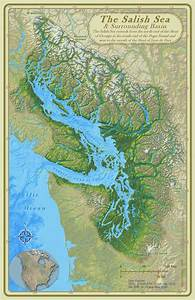 Health Of The Salish Sea Ecosystem Report