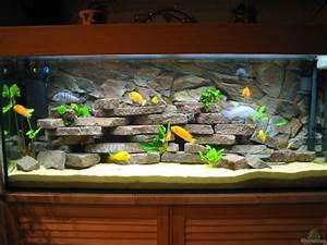 Aquarium Einrichten Beispiele : aquarium von karsten kettner becken 939 ~ Frokenaadalensverden.com Haus und Dekorationen