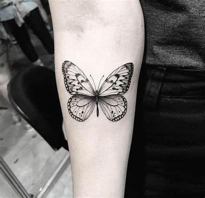 Butterfly Tattoo Tatuagens Borboleta Tattoos Tatuagem Hinh