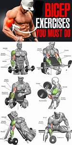 How To Biceps Exercises