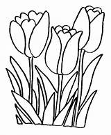 Coloring Flowers Pages Picgifs sketch template