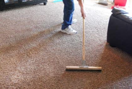 nettoyer un tapis a poils longs