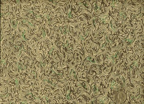 Vervain Fabrics Kyoto Cloud Gray Green Cotton Print