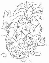 Pineapple Coloring Pages Printable Fruit Getcoloringpages Popular sketch template