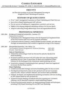 New Career Summary Examples For Resume Professional