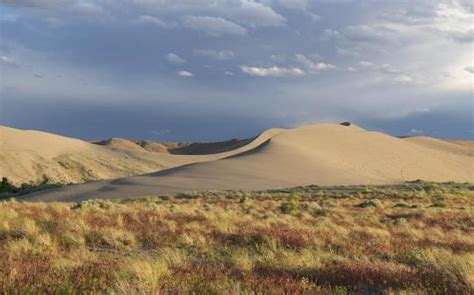 camping  bruneau dunes state park id