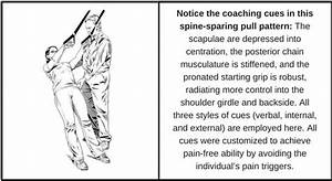 A Trainer U0026 39 S Guide To Help Treat And Fix Lower Back Pain