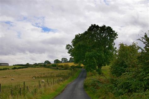 stock photo  english country lane freeimageslive