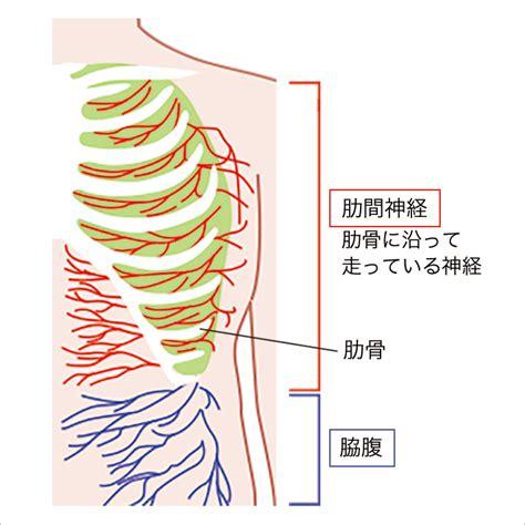 左 肋骨 の 下 が 痛い 婦人 科