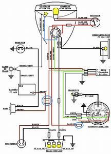 Essex Wiring Diagram