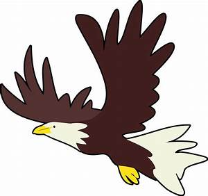 Bald Eagle | Free Images at Clker.com - vector clip art ...