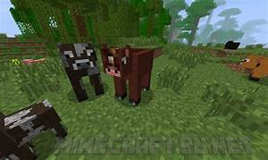 John 2 0 Minecraft : minecraft 2 0 releases mc pc net minecraft downloads ~ Medecine-chirurgie-esthetiques.com Avis de Voitures