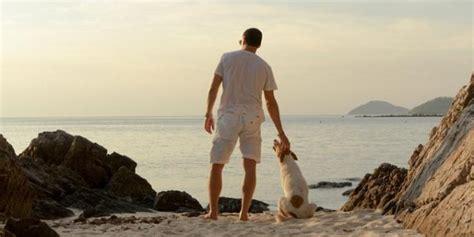 cing italien mit hund urlaub mit hund reisetipps italien