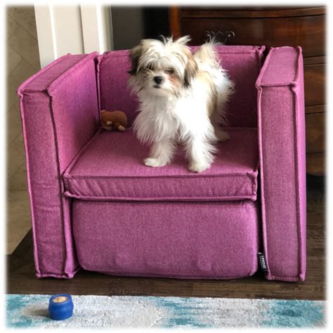 make your own lovesac lovesac sactionals for pets