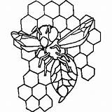 Bee Hive Coloring Sheet sketch template