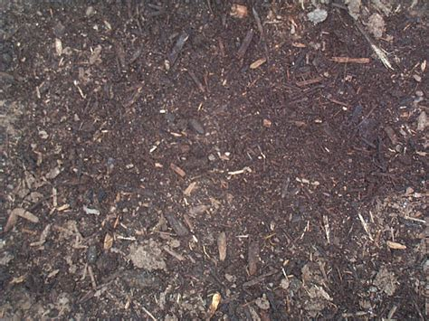 ground bark mulch top 28 ground bark mulch mulch stone depot oconee sand and gravel mulch blue daze ground