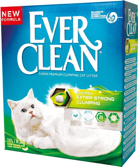 Ever Clean Katzenstreu Aqua Breeze, 10 L  Buntekatzede. Medical Physicist Programs File Maker Server. Water Damage South Salt Lake. Social Worker Vacancies Apple Web Page Design. Mass Spectrometry Sample Preparation. Budget Tracking Software Free Cell Phone Text. Software Developer Career Path. Masters In Non Profit Management. Software Change Management Tools