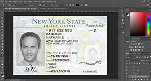 New York Driver License Template Psd  New Version