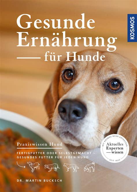 gesunde ernaehrung fuer hunde haltung gesundheit hunde