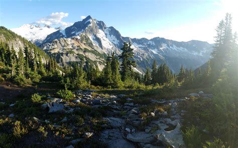 Free stock photo of evergreen, glacier, hike