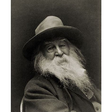there was a child went forth template lesson plans on walt whitman s most famous poems