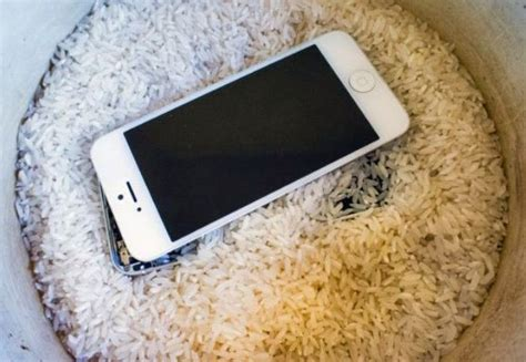 iphone in rice dropped iphone in toilet or water here s how to save it