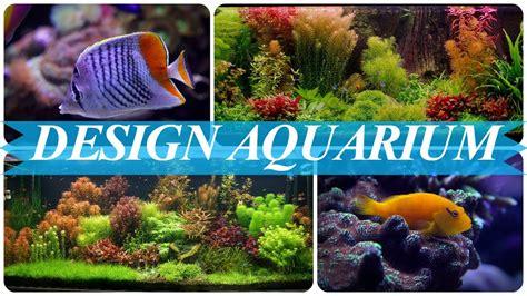Ideen Für Aquarium Gestaltung Youtube