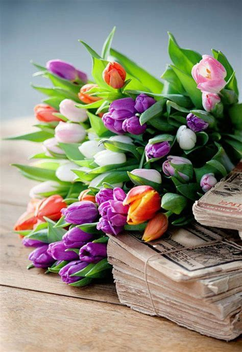 Ganz Schöne Bilder fr 252 hlingsblumen 100 faszinierende bilder archzine net
