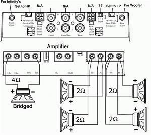 Speaker Amp Wiring Diagram