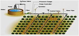 11  Layout Of Sprinkler Irrigation System 320