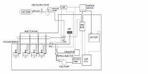 Schematic Diagram Of Cng Direct Injection System