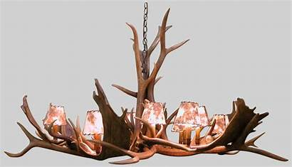 Antler Fallow Deer Custom Chandeliers Winning Maker