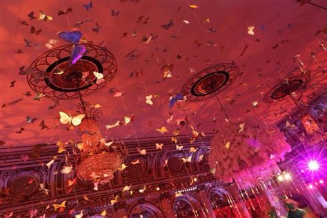 gold butterflies ceiling decor  images great
