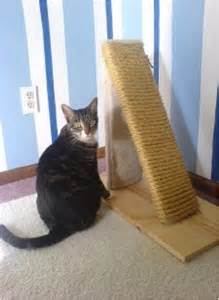cat posts top 10 diy cat scratching posts and pads top inspired