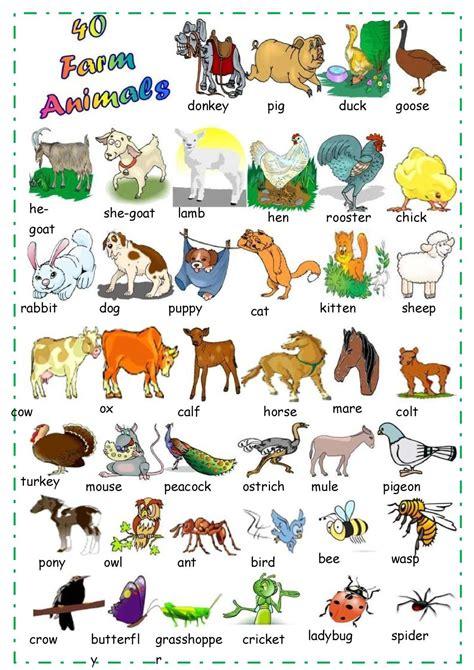 calameo find  farm animals