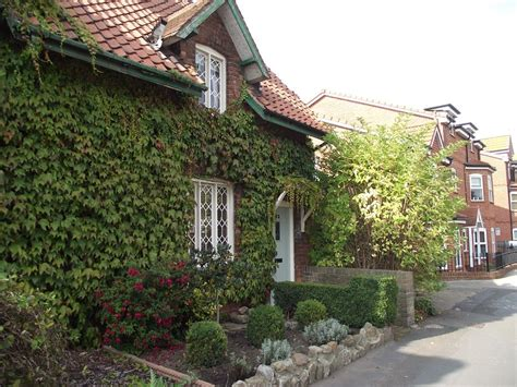 Cottage Near York by Wonderful Cosy Homely Cottage Near To York City Centre