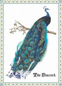 Head Size Chart Royal Peacock Cross Stitch Pattern Chart Graph