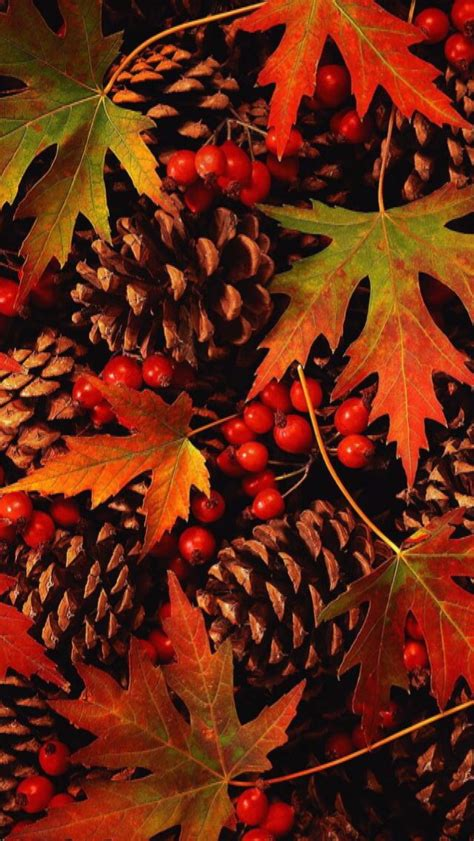 Aesthetic Thanksgiving Wallpaper by Iphone Wallpaper Thanksgiving Tjn Iphone Walls