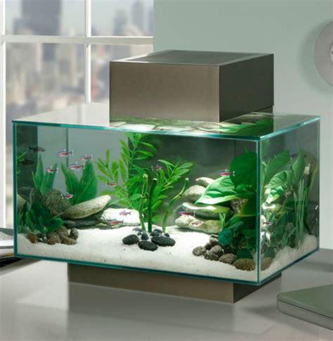 petit bureau bois aquarium design idées originales de meubles aquarium